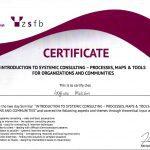 Сертификат по системному консалтингу
