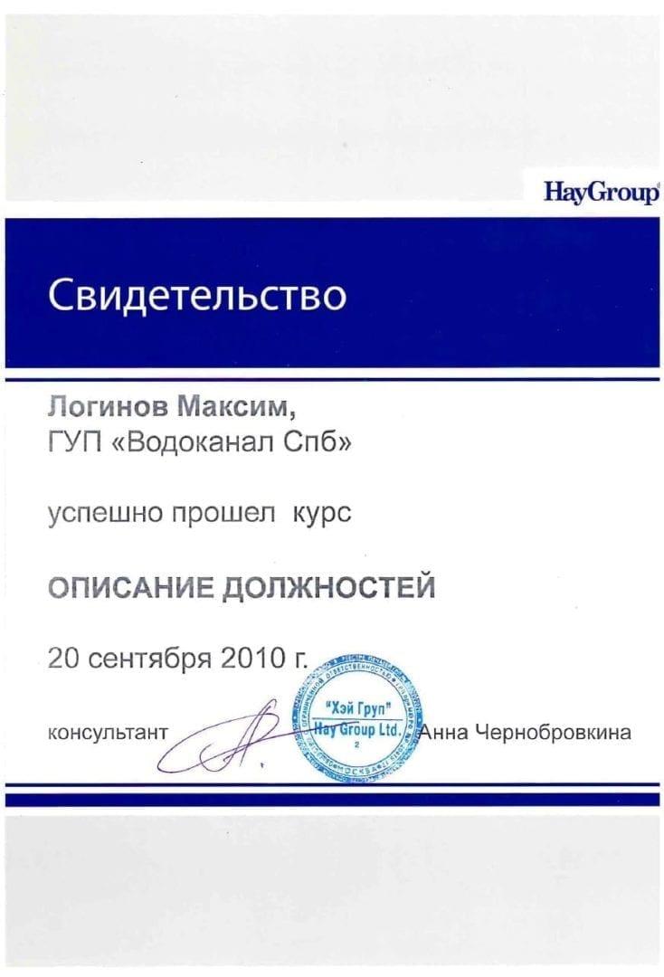 Описание должностей по методологии HayGroup